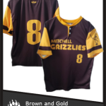 2019 Brown and Gold
